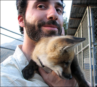 sure, baby fox. i think i can take it from here.